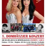 Plakat Domhätzjer2